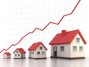 real estate investing, flip for profit