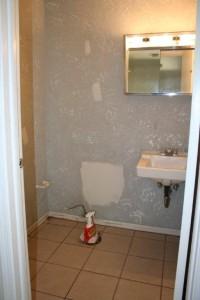 bathroom before