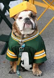 dog cheesehead